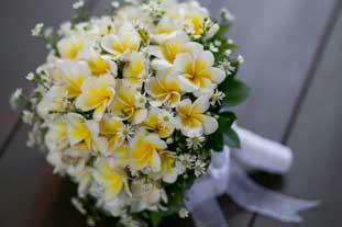 frangipani hand bouquet